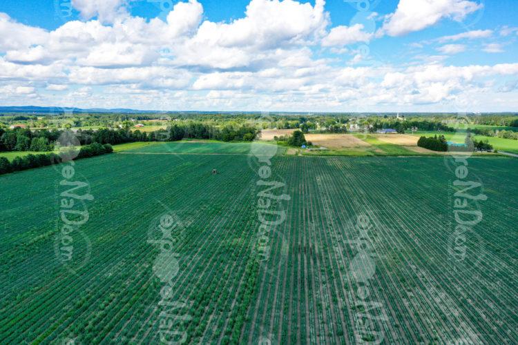 St-Liguori 2020 - Drone 7.1